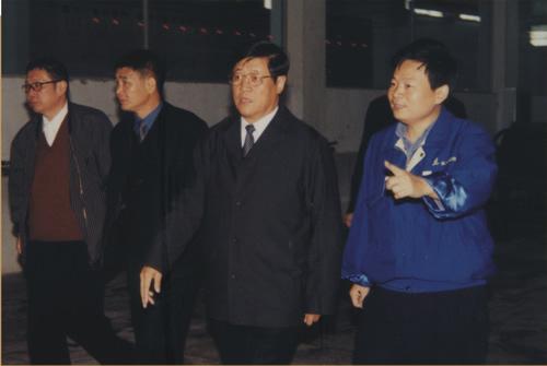 时任武汉市市长王守海来公司指导工作